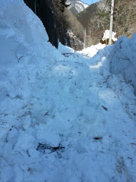 ▲相馬梢さん撮影。この雪道を2時間かけて実家へ辿り着いた。2月18日午後2時