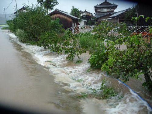 ▲氾濫する北川