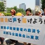 150527_「5・27国会に声を届けよう ! 原発事故被害者の救済を求める全国集会 in 東京」