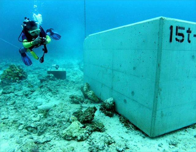▲サンゴ礁の上に設置された15トンのコンクリートブロック