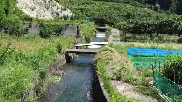 ▲トンネル工事によって毎分30トンの水が出たために作られた水路