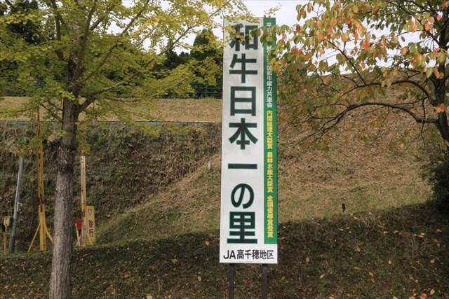 ▲高千穂牛は第9回全国和牛能力共進会で「日本一」を獲得