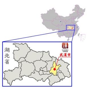 人口 中国 武漢 の